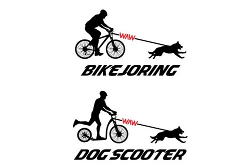 Bikejoring + Dog Scooter